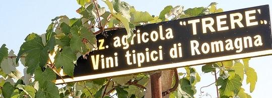 Агротуризм в Италии: отдых с колоритом деревни
