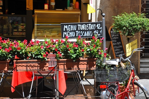 Туристическое меню, фото, Пиза, Италия