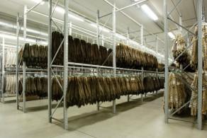 Большая часть меховых фабрик Италии расположена в окрестностях Милана