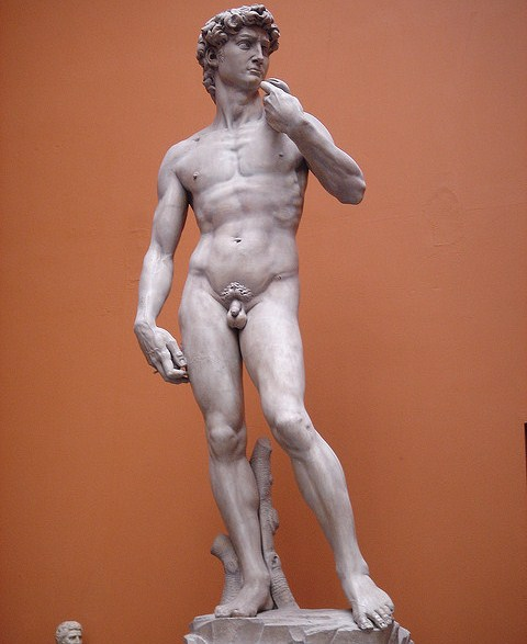 Давид, Микеланджело, Флоренция