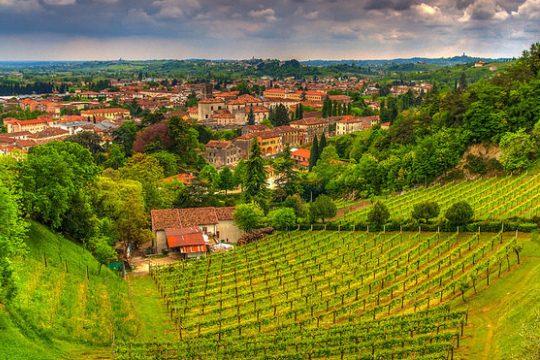 Знаменитые виноградники Венето