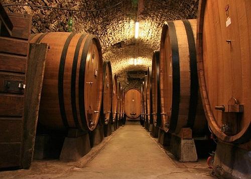 Дегустация вин в Тоскане